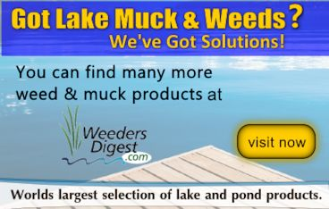 Lake Weed Solutions
